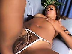 Latin Porn Tubes