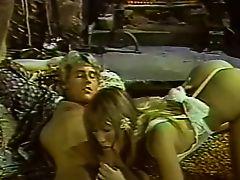 Francois Papillon - Hawaii Vice 5 (1989)